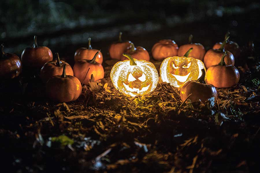 Halloween and Harvest at Georgia State parks