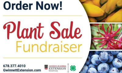 plant sale fundraiser uga extension